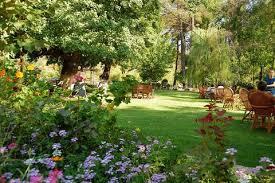 5 Dalya Garden